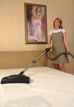 Bed Cleaning